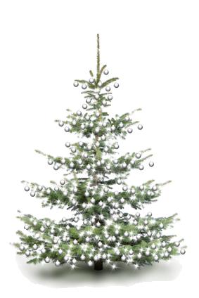 christbaumkugel.com-es wird weihnachten